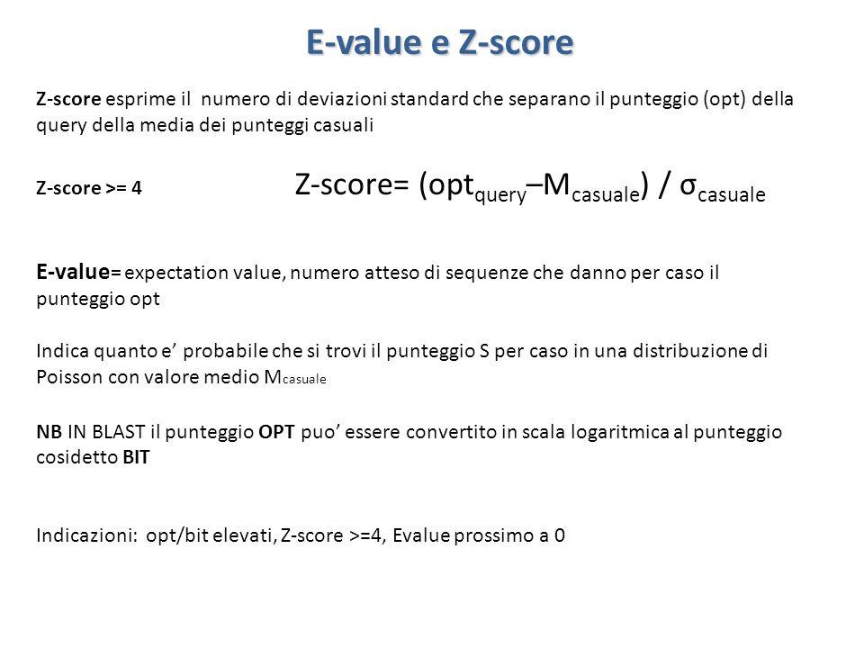 E-value e Z-score Z-score esprime il numero di deviazioni standard che separano il punteggio (opt) della query della media dei punteggi casuali Z-scor