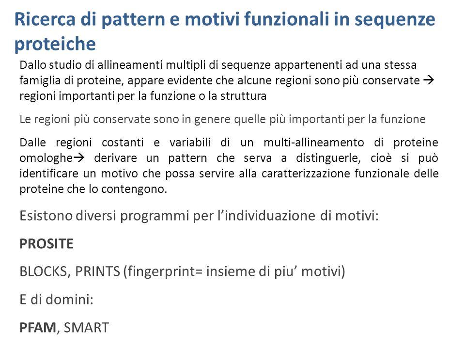 Ricerca di pattern e motivi funzionali in sequenze proteiche Dallo studio di allineamenti multipli di sequenze appartenenti ad una stessa famiglia di