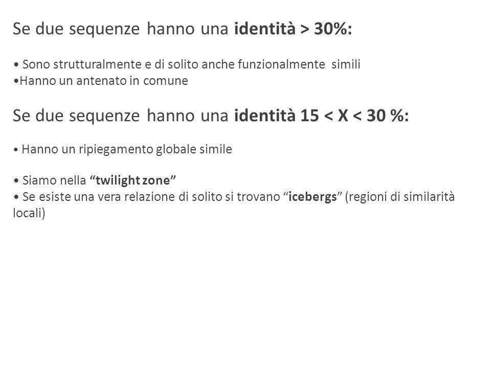 Se due sequenze hanno una identità > 30%: Sono strutturalmente e di solito anche funzionalmente simili Hanno un antenato in comune Se due sequenze han