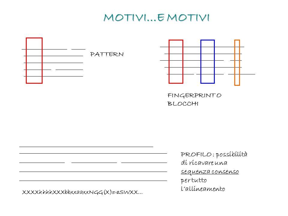 MOTIVI…E MOTIVI PATTERN FINGERPRINT O BLOCCHI XXXXhhhhXXXbbxxaaxxNGG(X) 5-8 SWXX… PROFILO : possibilità di ricavare una sequenza consenso per tutto la