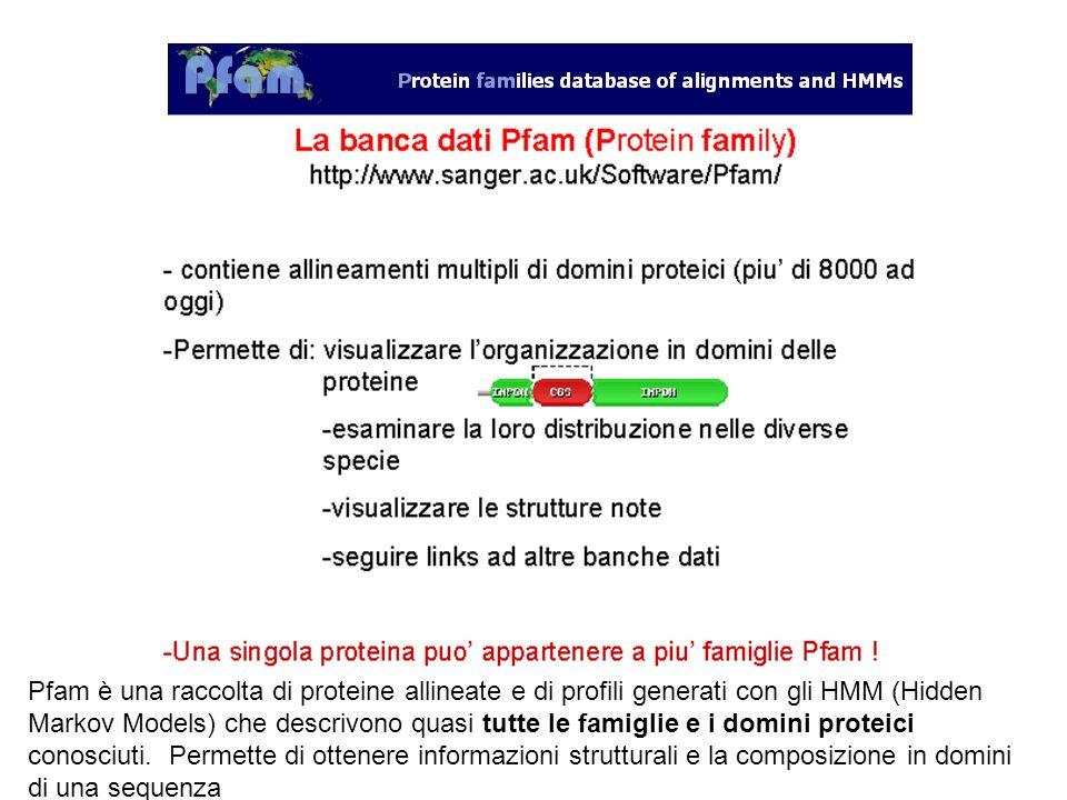 Pfam è una raccolta di proteine allineate e di profili generati con gli HMM (Hidden Markov Models) che descrivono quasi tutte le famiglie e i domini p