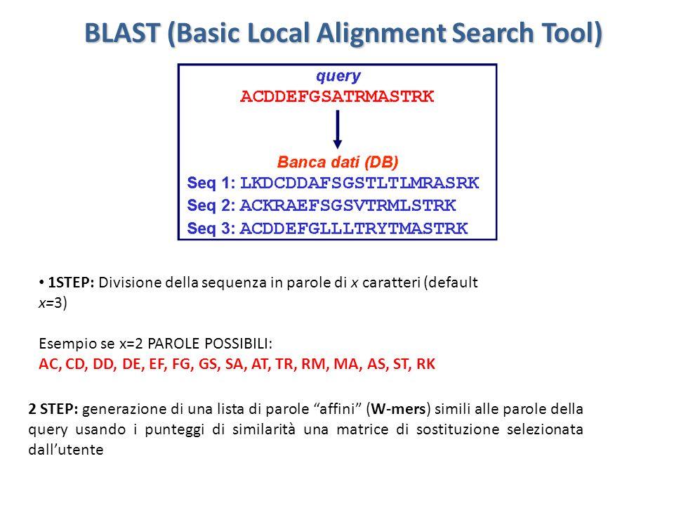 BLAST (Basic Local Alignment Search Tool) 2.Sono considerati tutti i W-mers (parole affini) che superano una soglia fissata T quando allineati con parole della QUERY 3.