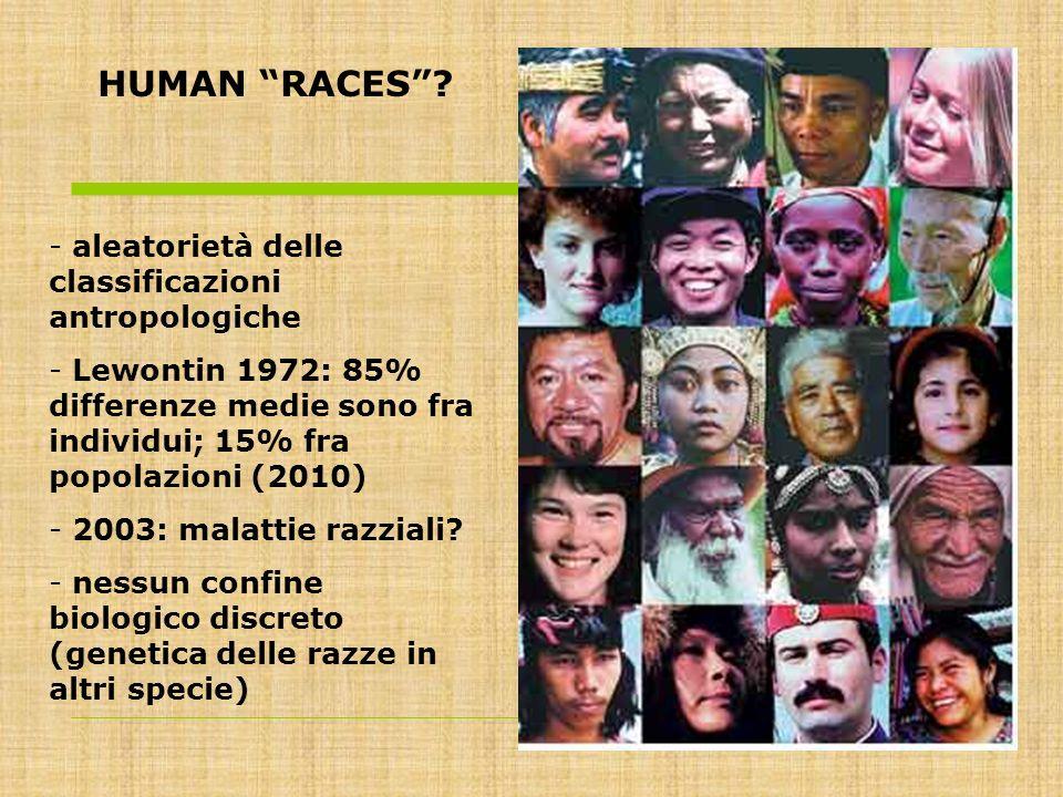HUMAN RACES? - aleatorietà delle classificazioni antropologiche - Lewontin 1972: 85% differenze medie sono fra individui; 15% fra popolazioni (2010) -