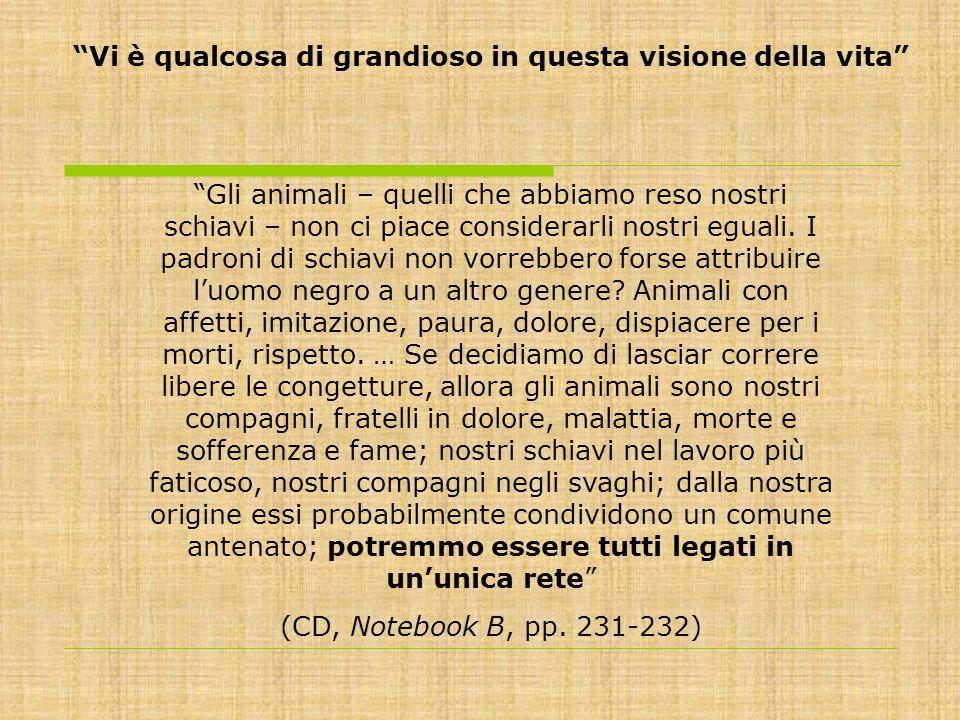 Gli animali – quelli che abbiamo reso nostri schiavi – non ci piace considerarli nostri eguali. I padroni di schiavi non vorrebbero forse attribuire l