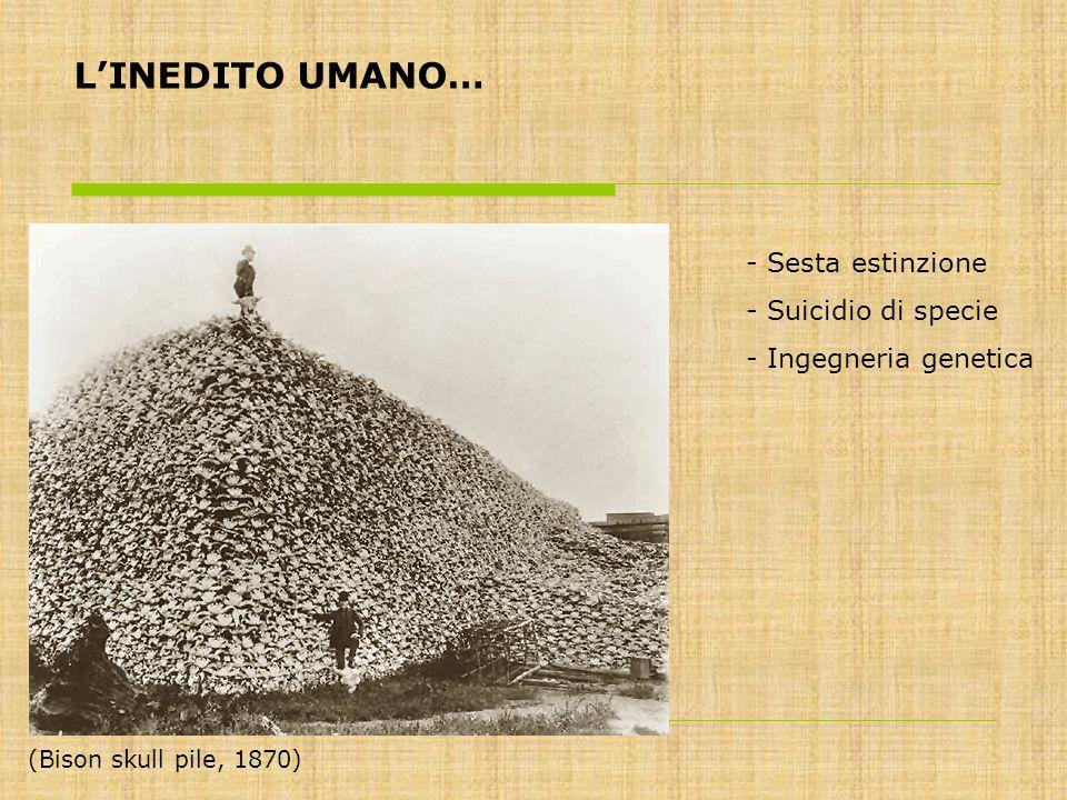 LINEDITO UMANO… - Sesta estinzione - Suicidio di specie - Ingegneria genetica (Bison skull pile, 1870)