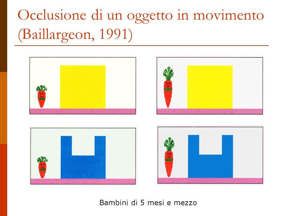 Occlusione di un oggetto in movimento (Baillargeon, 1991) Bambini di 5 mesi e mezzo