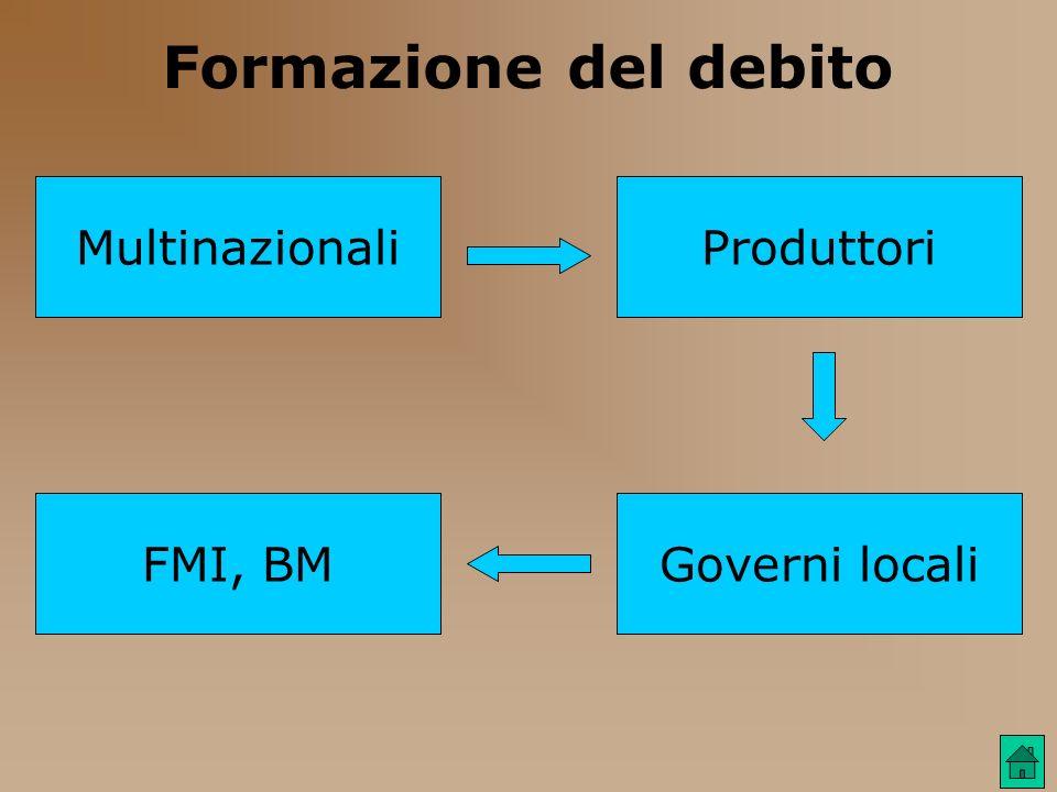 Formazione del debito Produttori Governi localiFMI, BM Multinazionali