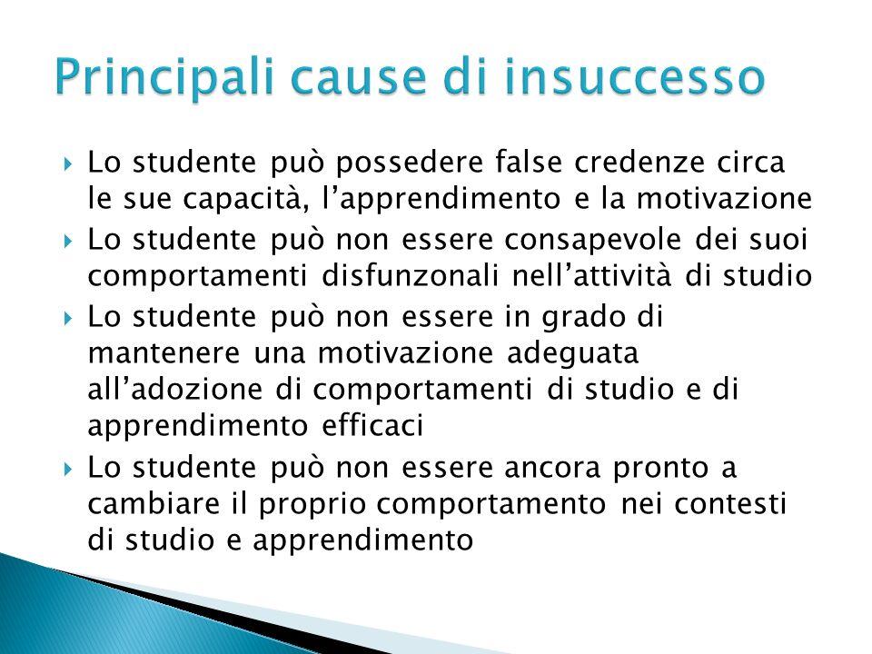 Lo studente può possedere false credenze circa le sue capacità, lapprendimento e la motivazione Lo studente può non essere consapevole dei suoi compor