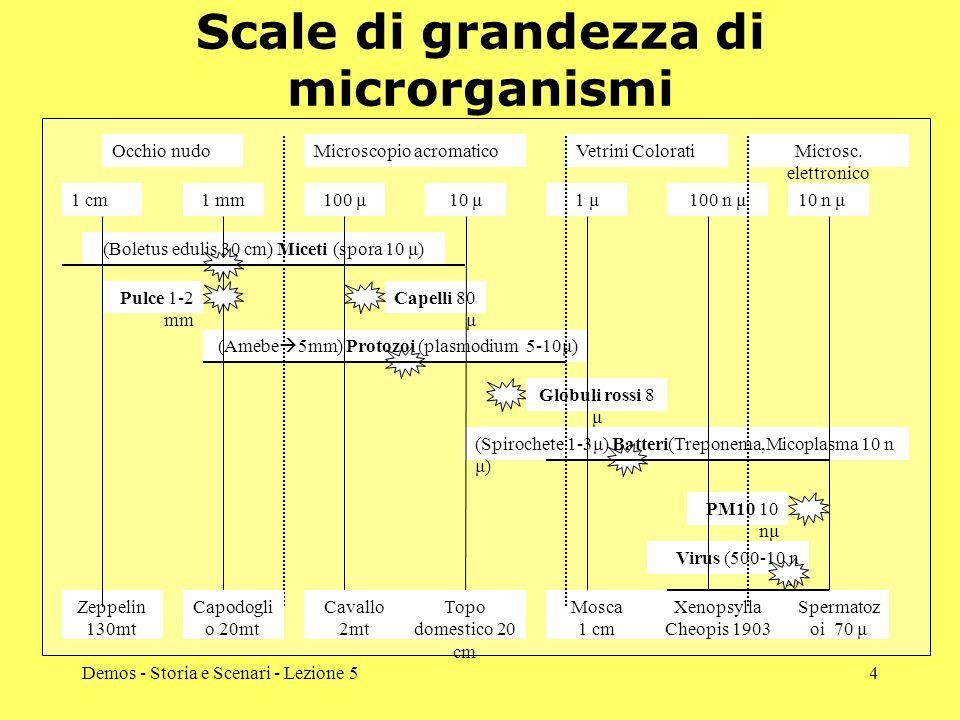 Demos - Storia e Scenari - Lezione 54 Scale di grandezza di microrganismi 1 cm1 mm100 μ10 μ1 μ100 n μ10 n μ (Boletus edulis 30 cm) Miceti (spora 10 μ)
