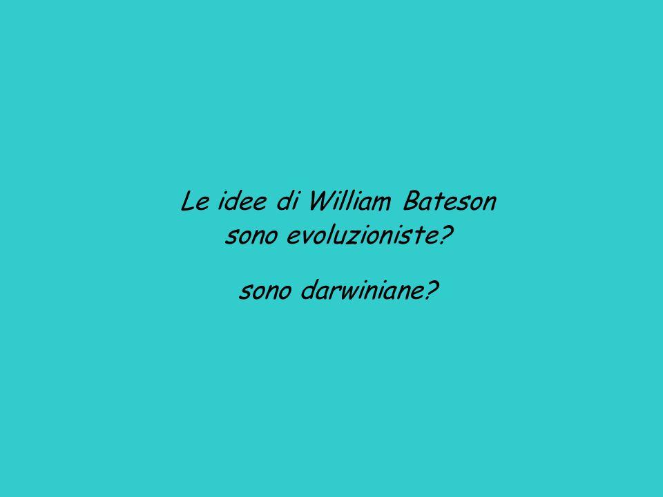 Le idee di William Bateson sono evoluzioniste? sono darwiniane?