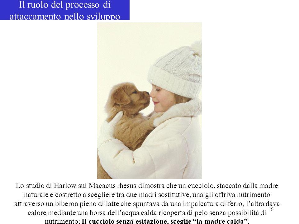 6 Lo studio di Harlow sui Macacus rhesus dimostra che un cucciolo, staccato dalla madre naturale e costretto a scegliere tra due madri sostitutive, un