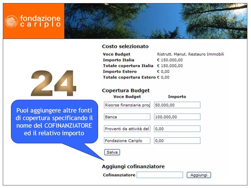 Puoi aggiungere altre fonti di copertura specificando il nome del COFINANZIATORE ed il relativo importo