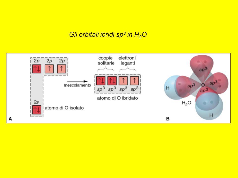 Gli orbitali ibridi sp 3 in H 2 O