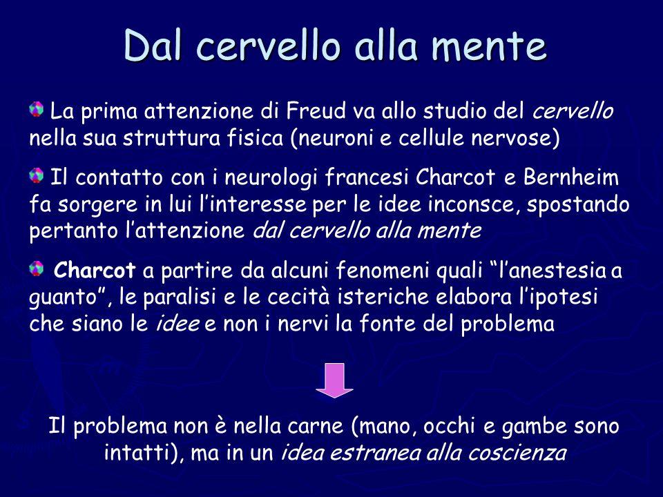 Dal cervello alla mente La prima attenzione di Freud va allo studio del cervello nella sua struttura fisica (neuroni e cellule nervose) Il contatto co