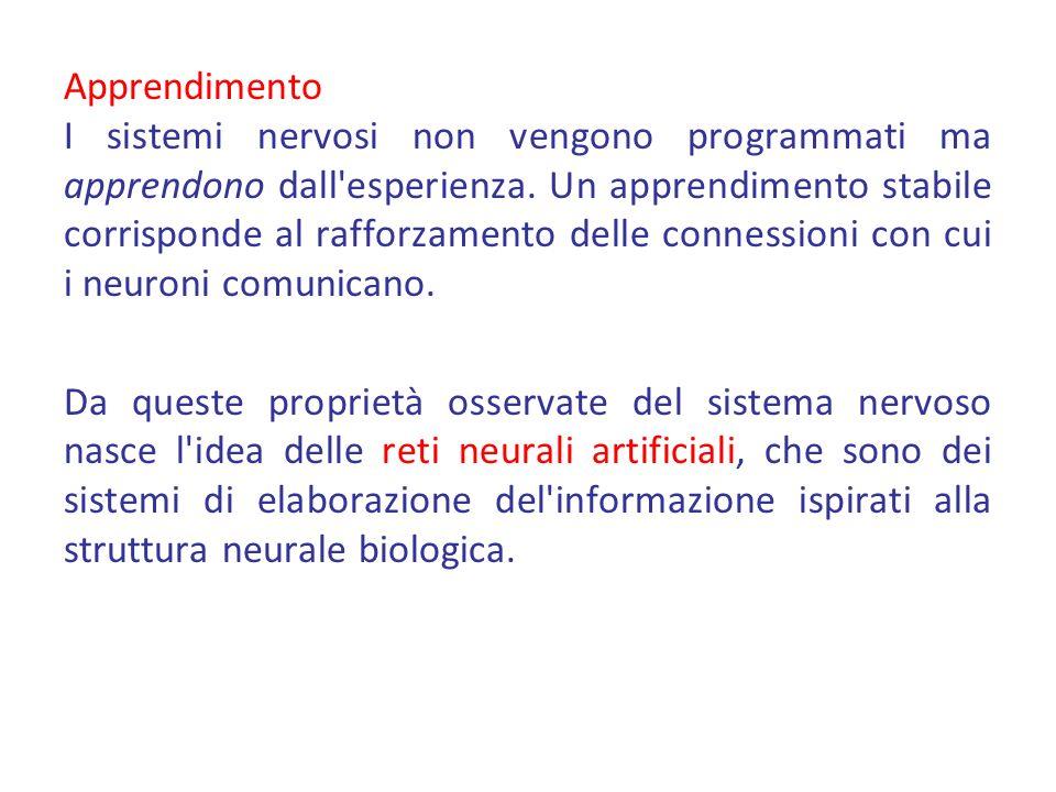 Apprendimento I sistemi nervosi non vengono programmati ma apprendono dall esperienza.