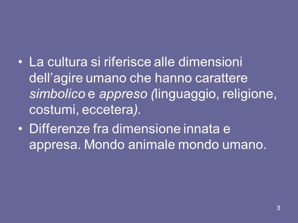 La cultura si riferisce alle dimensioni dellagire umano che hanno carattere simbolico e appreso (linguaggio, religione, costumi, eccetera).