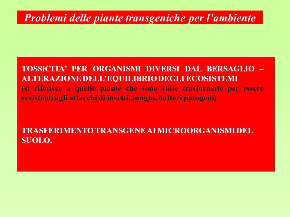 Problemi delle piante transgeniche per lambiente TOSSICITA PER ORGANISMI DIVERSI DAL BERSAGLIO – ALTERAZIONE DELLEQUILIBRIO DEGLI ECOSISTEMI (si rifer