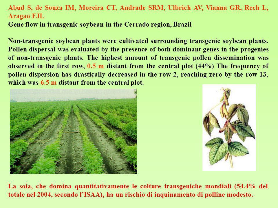 La soia, che domina quantitativamente le colture transgeniche mondiali (54.4% del totale nel 2004, secondo lISAA), ha un rischio di inquinamento di po