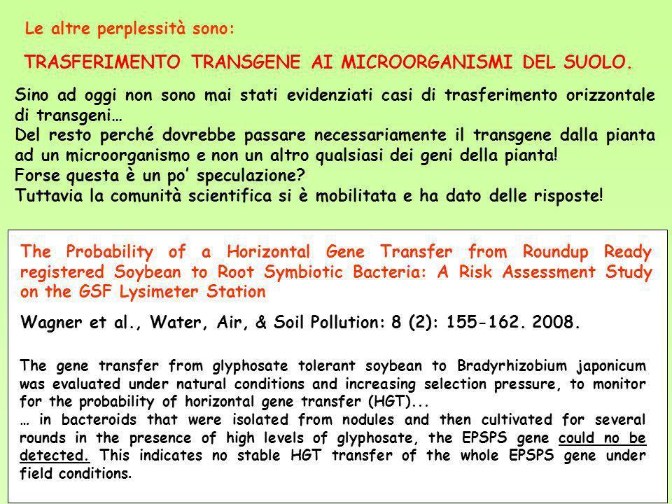 TRASFERIMENTO TRANSGENE AI MICROORGANISMI DEL SUOLO. Le altre perplessità sono: Sino ad oggi non sono mai stati evidenziati casi di trasferimento oriz