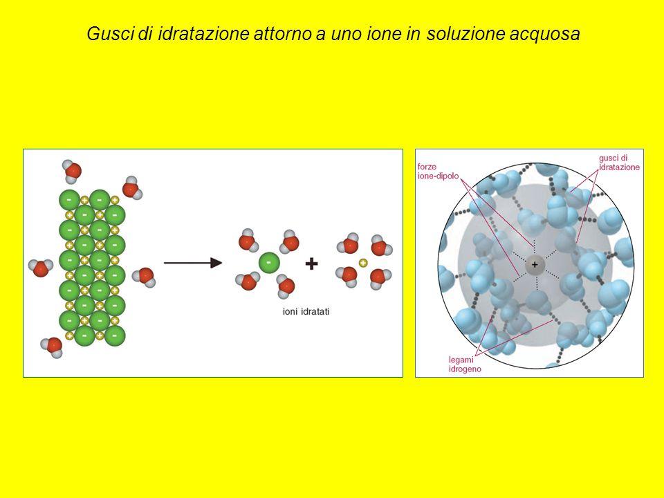 Gusci di idratazione attorno a uno ione in soluzione acquosa