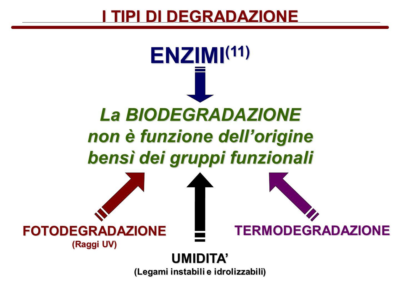 I TIPI DI DEGRADAZIONE La BIODEGRADAZIONE non è funzione dellorigine bensì dei gruppi funzionali ENZIMI (11) FOTODEGRADAZIONE (Raggi UV) TERMODEGRADAZ