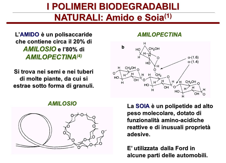 I POLIMERI BIODEGRADABILI NATURALI: Amido e Soia (1) LAMIDO è un polisaccaride che contiene circa il 20% di AMILOSIO e l80% di AMILOPECTINA (4) Si tro