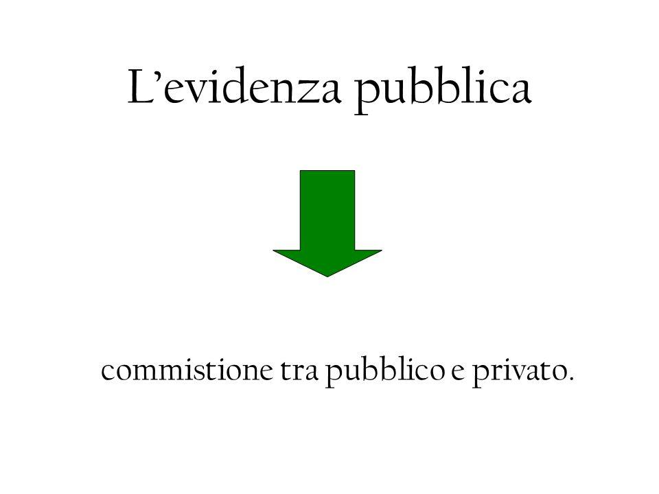 Levidenza pubblica commistione tra pubblico e privato.