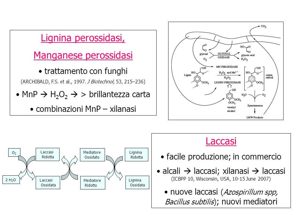 Lignina perossidasi, Manganese perossidasi trattamento con funghi (ARCHIBALD, F.S. et al., 1997. J Biotechnol, 53, 215–236) MnP H 2 O 2 > brillantezza