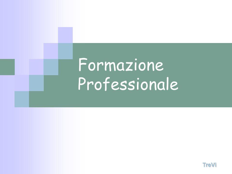 Formazione Professionale TreVi