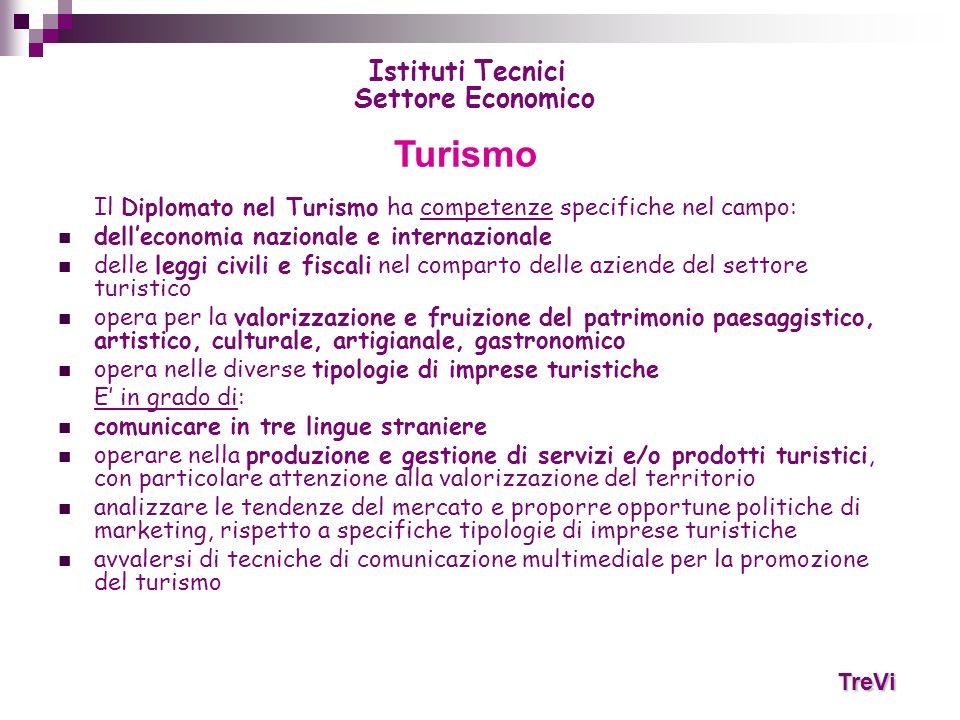 Il Diplomato nel Turismo ha competenze specifiche nel campo: delleconomia nazionale e internazionale delle leggi civili e fiscali nel comparto delle a