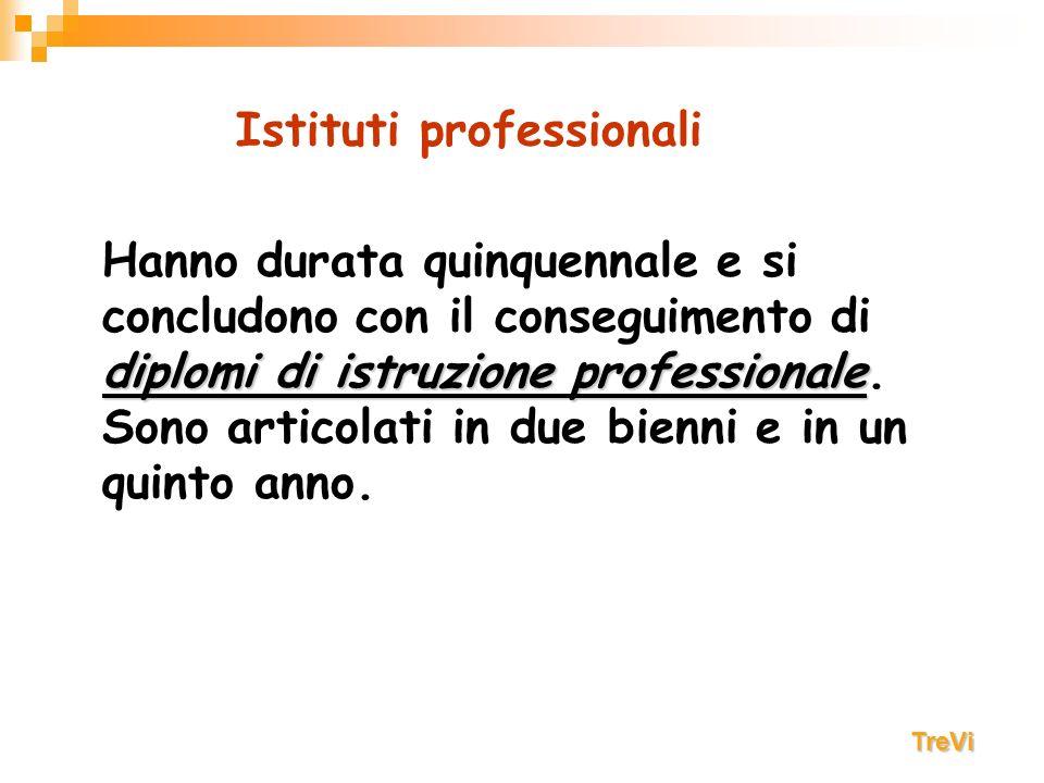 Consentono l acquisizione di competenze di istruzione generale e tecnico-professionale.