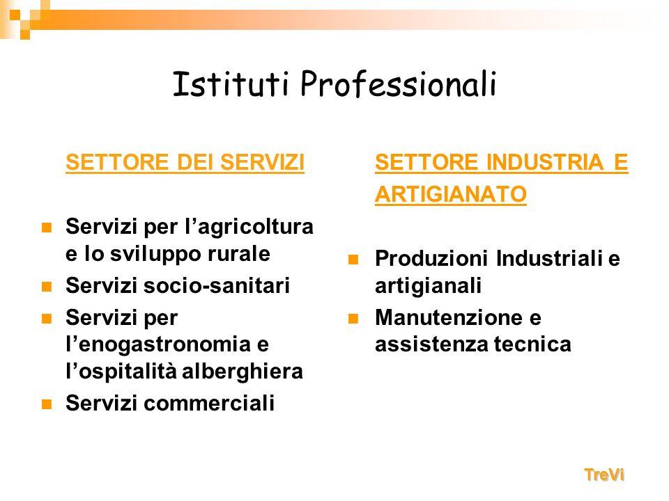 Istituti Professionali SETTORE DEI SERVIZI Servizi per lagricoltura e lo sviluppo rurale Servizi socio-sanitari Servizi per lenogastronomia e lospital