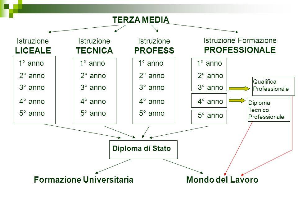 Istruzione LICEALE 1° anno 2° anno 3° anno 4° anno 5° anno Diploma di Stato Istruzione TECNICA 1° anno 2° anno 3° anno 4° anno 5° anno Istruzione PROF