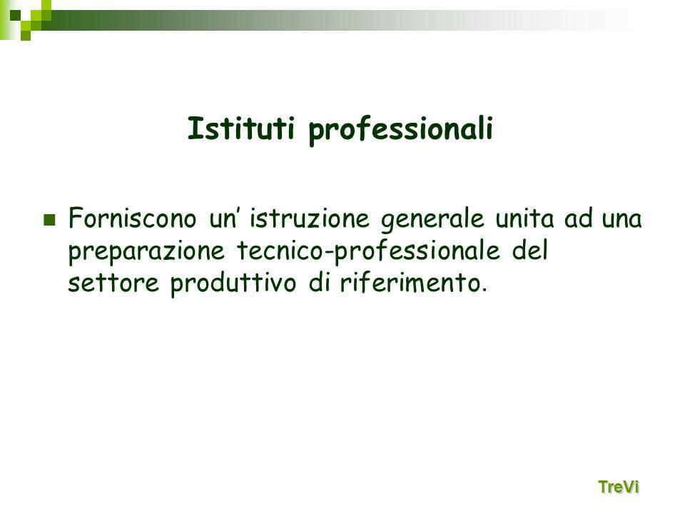 Forniscono un istruzione generale unita ad una preparazione tecnico-professionale del settore produttivo di riferimento. Istituti professionali TreVi