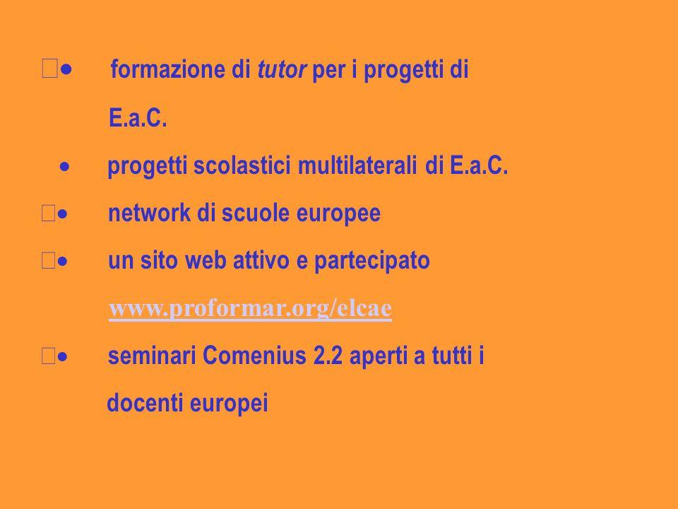 formazione di tutor per i progetti di E.a.C.progetti scolastici multilaterali di E.a.C.