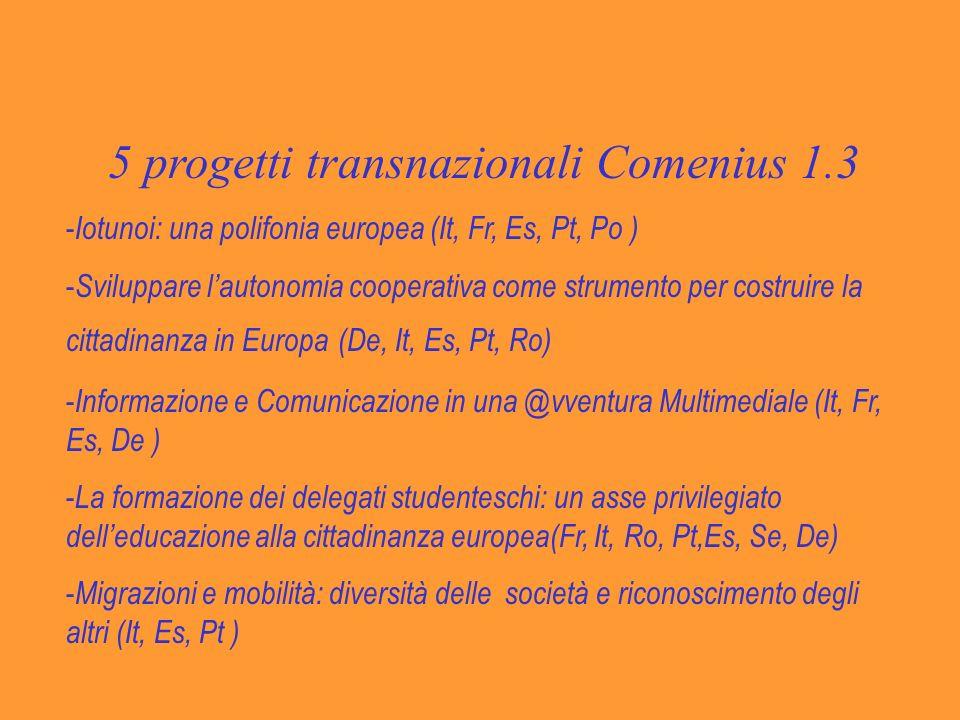 5 progetti transnazionali Comenius 1.3 - Iotunoi: una polifonia europea (It, Fr, Es, Pt, Po ) - Sviluppare lautonomia cooperativa come strumento per costruire la cittadinanza in Europa (De, It, Es, Pt, Ro) - Informazione e Comunicazione in una @vventura Multimediale (It, Fr, Es, De ) - La formazione dei delegati studenteschi: un asse privilegiato delleducazione alla cittadinanza europea(Fr, It, Ro, Pt,Es, Se, De) - Migrazioni e mobilità: diversità delle società e riconoscimento degli altri (It, Es, Pt )