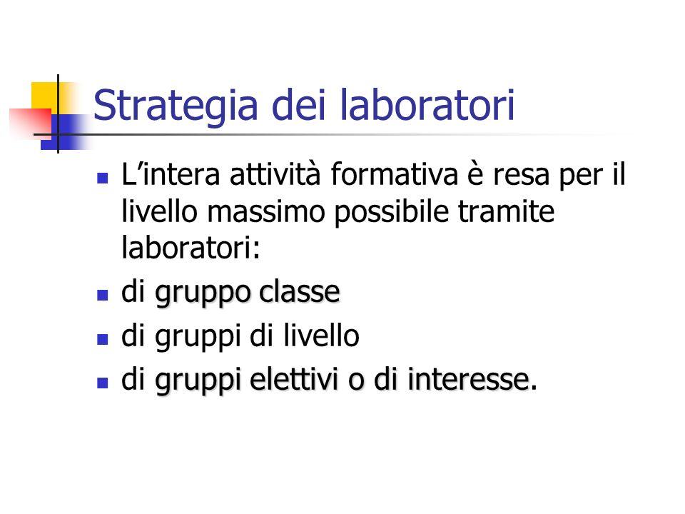 Strategia dei laboratori Lintera attività formativa è resa per il livello massimo possibile tramite laboratori: gruppo classe di gruppo classe di grup
