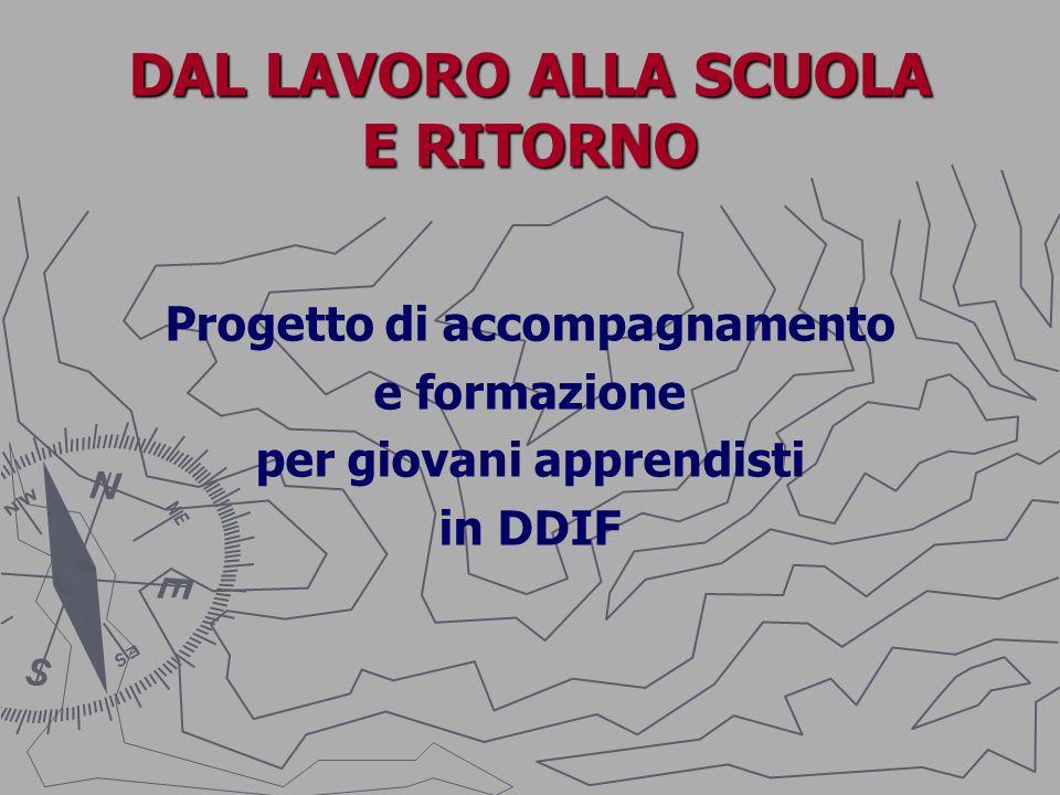 DAL LAVORO ALLA SCUOLA E RITORNO Progetto di accompagnamento e formazione per giovani apprendisti in DDIF