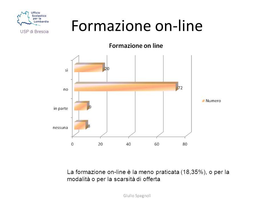Formazione on-line Giulio Spagnoli USP di Brescia La formazione on-line è la meno praticata (18,35%), o per la modalità o per la scarsità di offerta