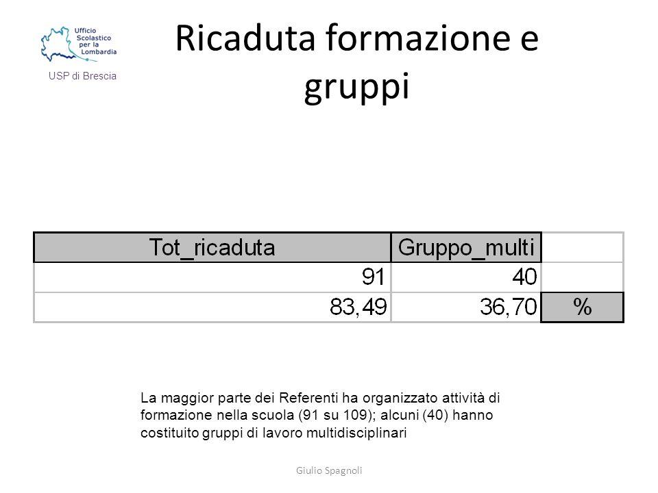 Ricaduta formazione e gruppi Giulio Spagnoli USP di Brescia La maggior parte dei Referenti ha organizzato attività di formazione nella scuola (91 su 109); alcuni (40) hanno costituito gruppi di lavoro multidisciplinari