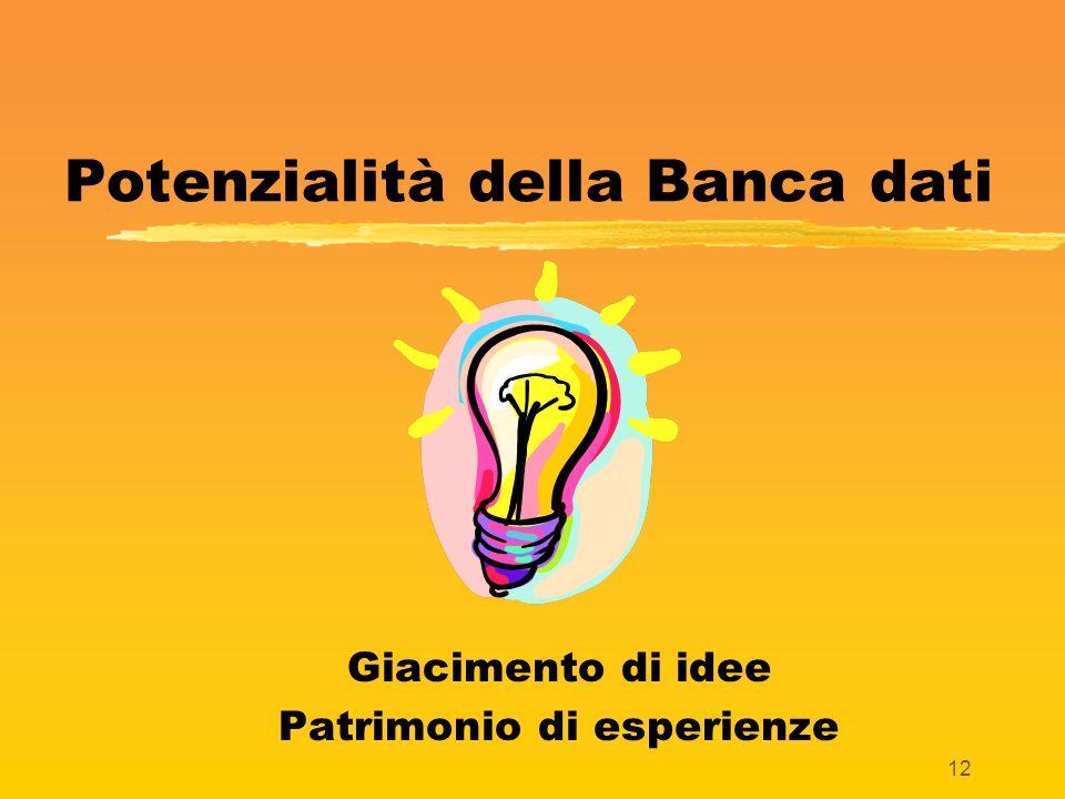12 Potenzialità della Banca dati Giacimento di idee Patrimonio di esperienze