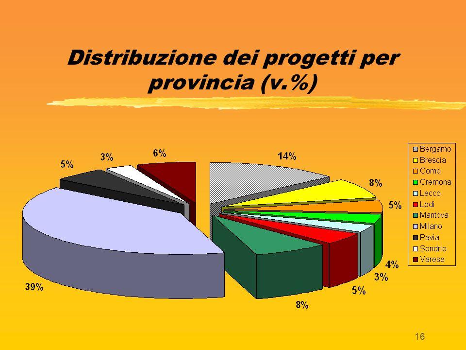 16 Distribuzione dei progetti per provincia (v.%)
