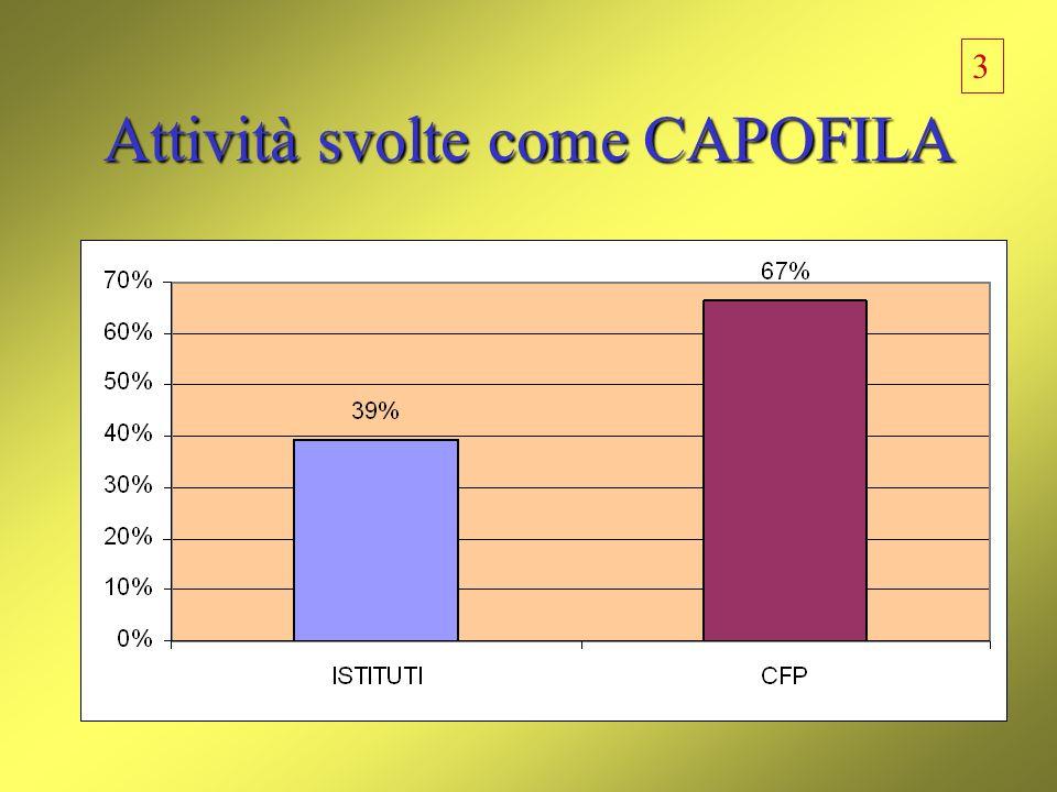 Attività svolte come CAPOFILA 3