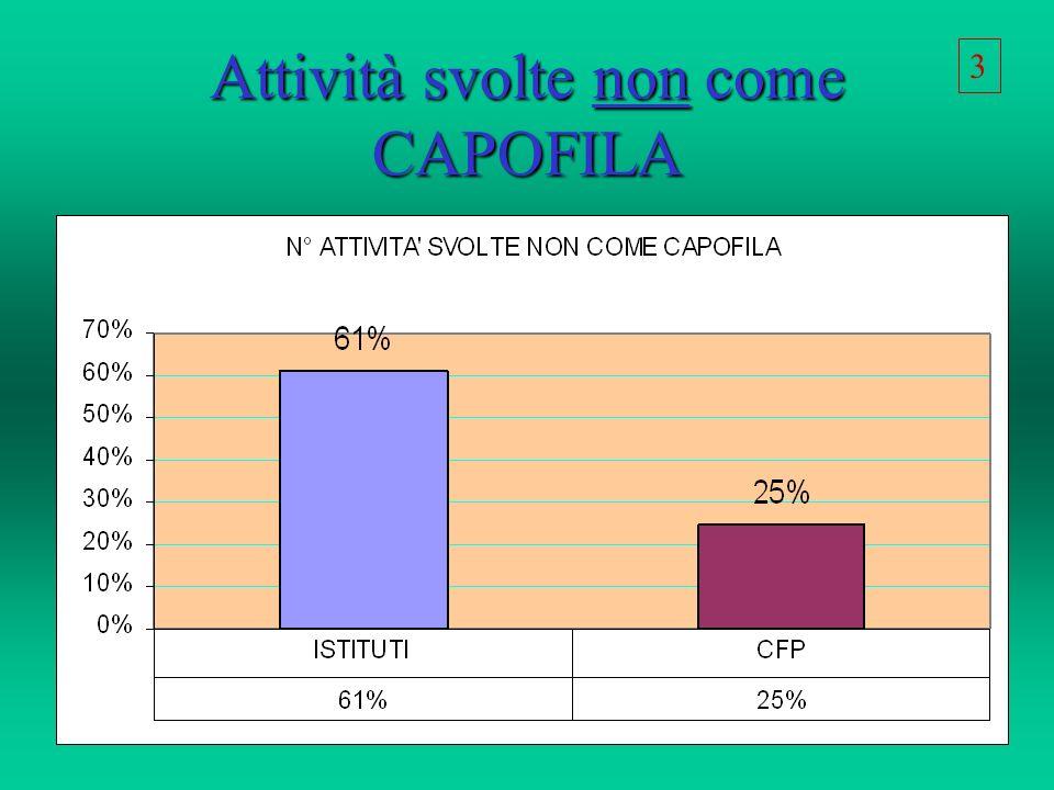 Attività svolte non come CAPOFILA 3