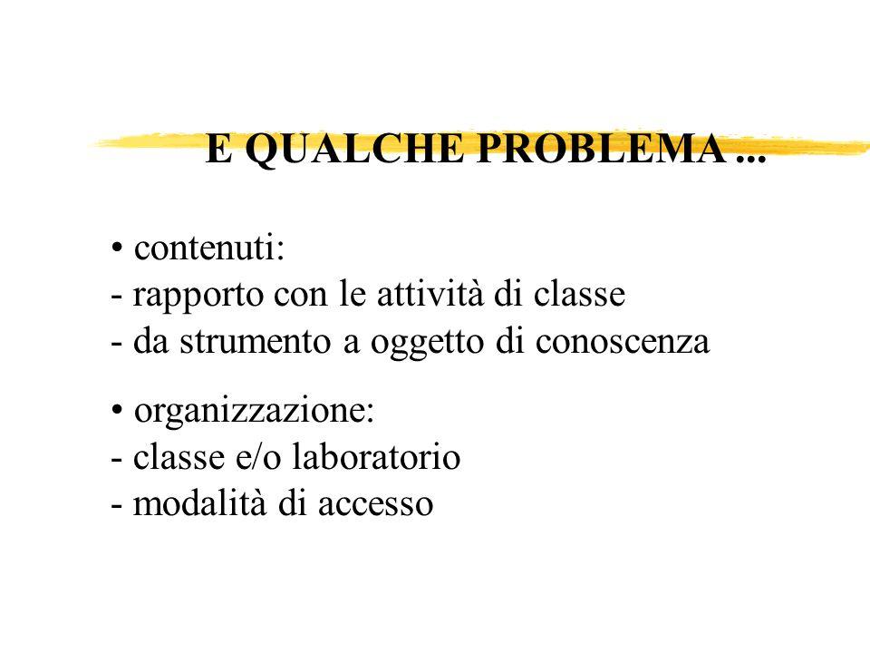 contenuti: - rapporto con le attività di classe - da strumento a oggetto di conoscenza organizzazione: - classe e/o laboratorio - modalità di accesso E QUALCHE PROBLEMA...