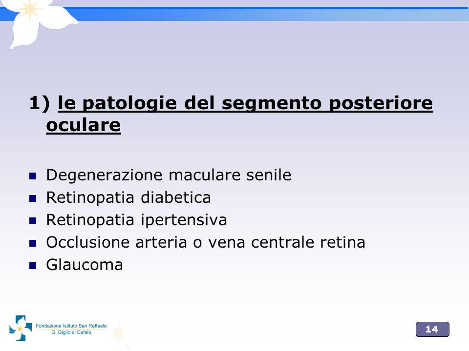 14 1) le patologie del segmento posteriore oculare Degenerazione maculare senile Retinopatia diabetica Retinopatia ipertensiva Occlusione arteria o ve