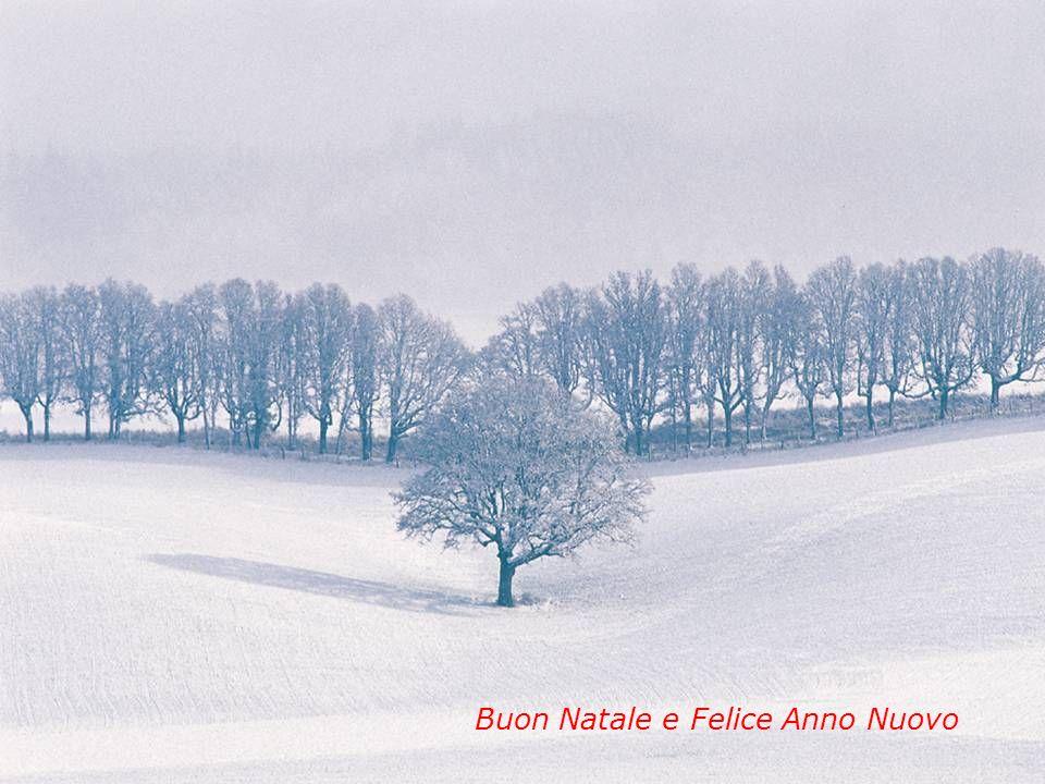 11 Buon Natale e Felice Anno Nuovo