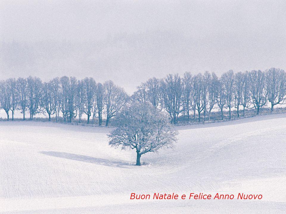 12 Buon Natale e Felice Anno Nuovo