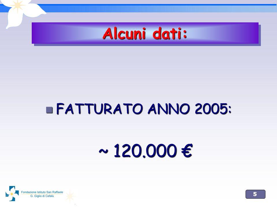 5 FATTURATO ANNO 2005: FATTURATO ANNO 2005: ~ 120.000 ~ 120.000 Alcuni dati: