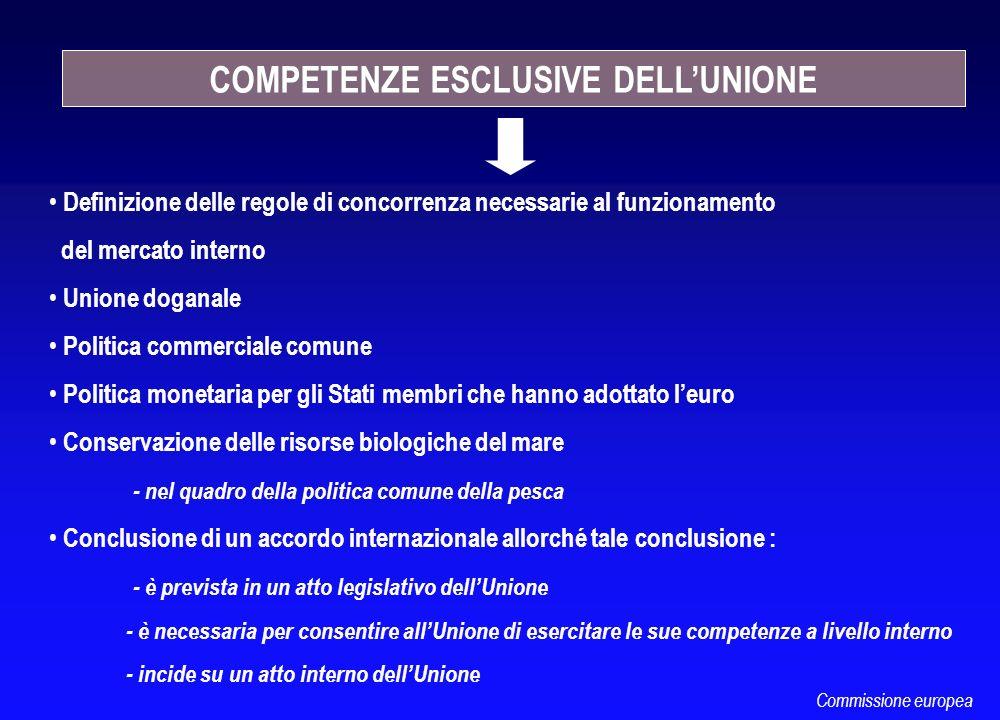 Definizione delle regole di concorrenza necessarie al funzionamento del mercato interno Unione doganale Politica commerciale comune Politica monetaria